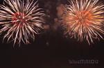 Flowers fireworks by blueMALOU