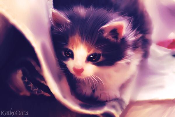 Cute Kitten by KatkoOota