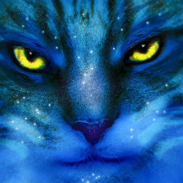 Cat-Avatar by KatkoOota on DeviantArt: katkooota.deviantart.com/art/Cat-Avatar-189290555
