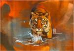 _study tiger