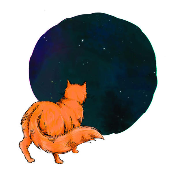 The cat and the night by Gogolle