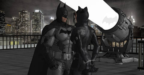 Batman and Catwoman's Valentine Day Special by WildGold