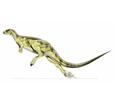 Dryosaurus by Strikerprime