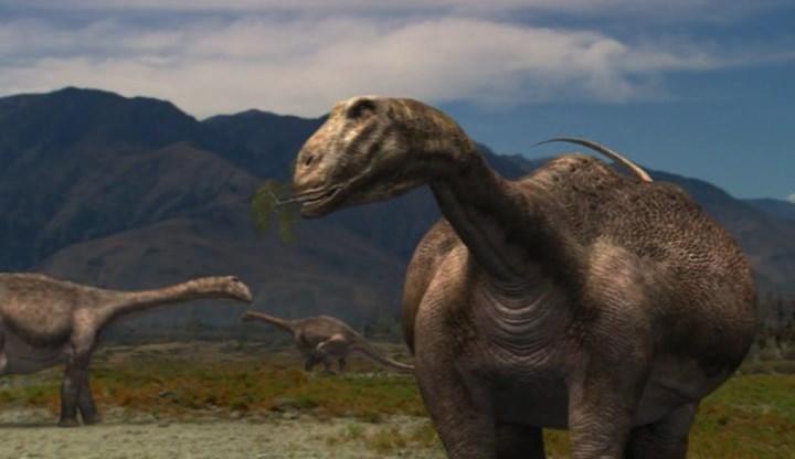 Saltasaurus by Strikerprime