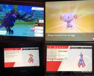 Gen. 8 Shiny Pokemon Collection