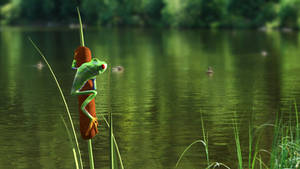 Frog 3D Incrustation