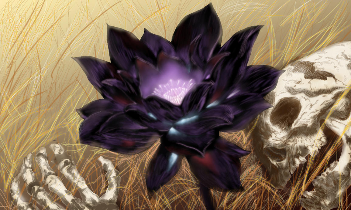 Black Lotus By Karl Smink On Deviantart
