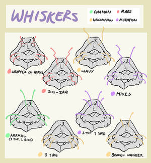 Cucullos Ref - Whisker