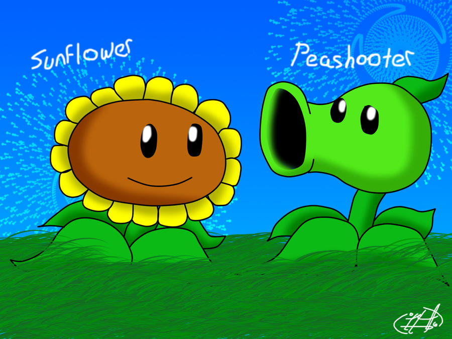 peashooter and sunflower