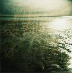 Seaside. by thecatspyjamas