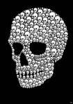 Skull(s)