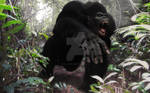 Gorilla in the jungle by Cyrille-Dethan