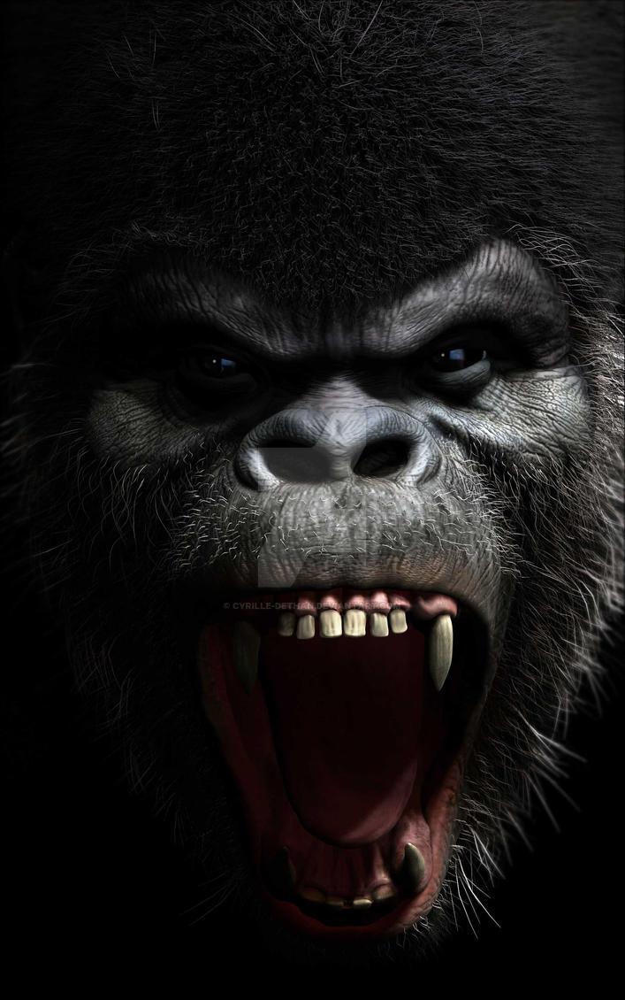 Gorilla roar by Cyrille-Dethan