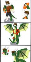 Comission: Dragon stone TF