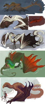 Unfinished Dragons