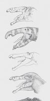 Masquerading as Crocodiles by r-heinart