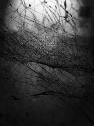 Black web by FeelFreeToComprehend