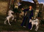Professors of Worthwich: Arafinn Silvanus