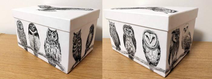Pandora's owl box
