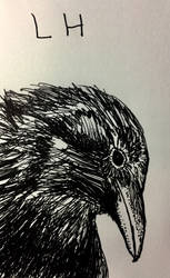 crow face by Abuttonpress2Nothing