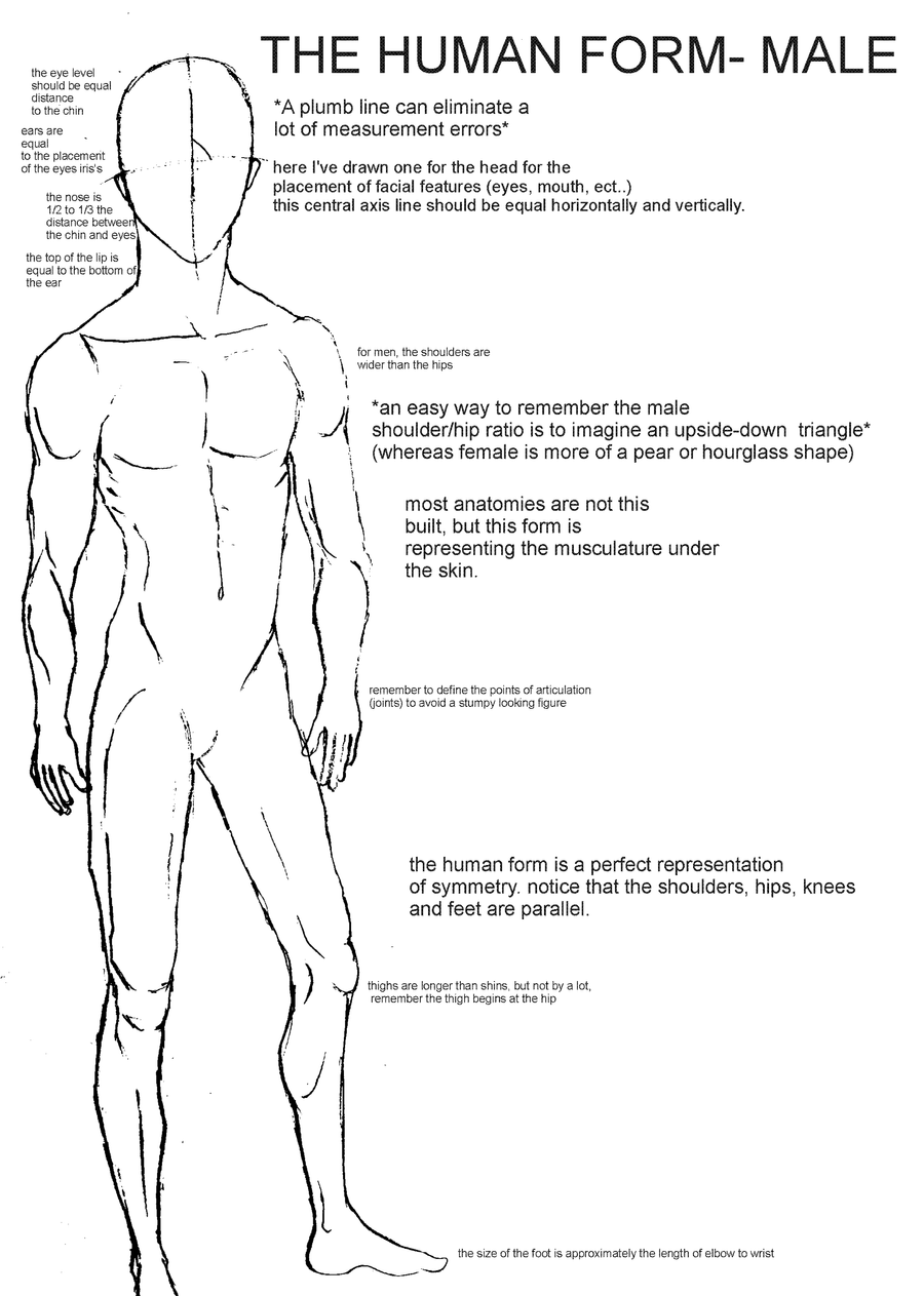Human Form Tutorial- Male by Xadrea