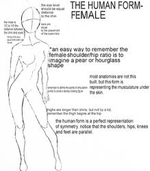 Human Form Tutorial- Female by Xadrea
