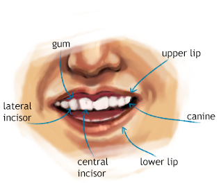 Sneak Peak: Mouth and Teeth Tutorial by Xadrea