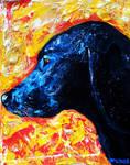 Commission dog 1