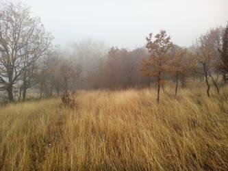 Distant Fog by ChildOfMorpheus