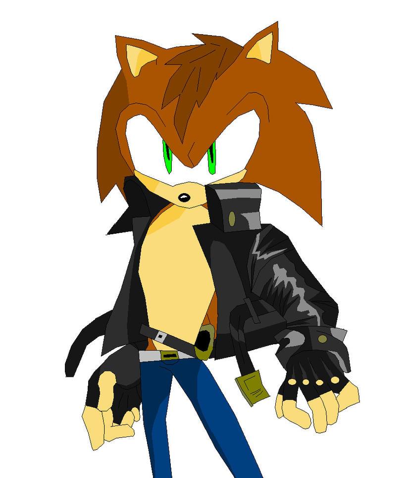 Cameron The Hedgehog by Vakama3
