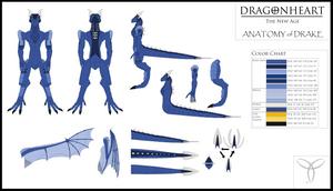 DH TNA Drake Anatomy Chart