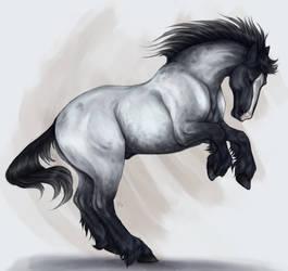 War horse by Ashivrn