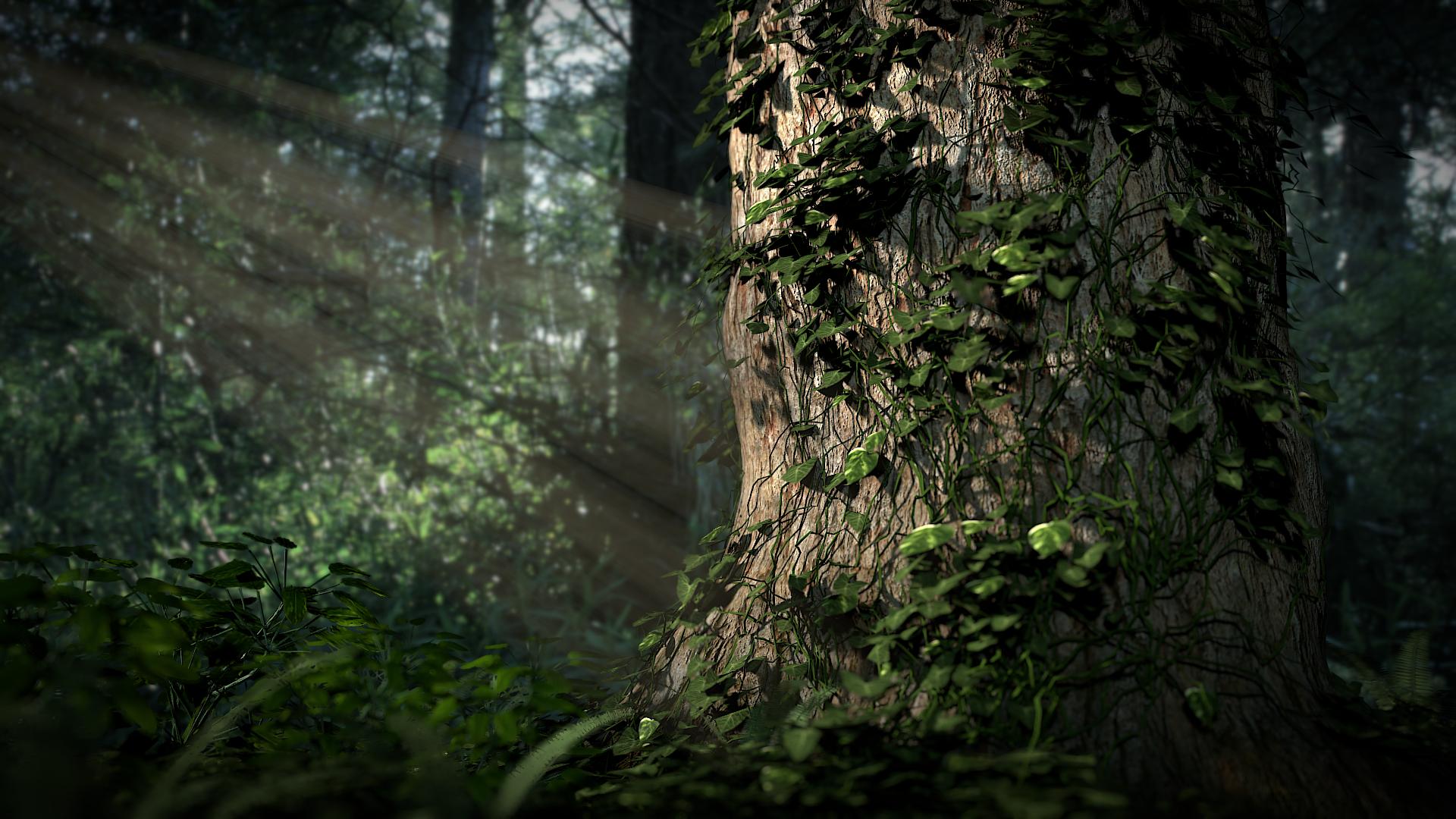 Forest Scene by SXPanda on DeviantArt: sxpanda.deviantart.com/art/Forest-Scene-282696853