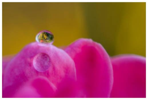 Water lens