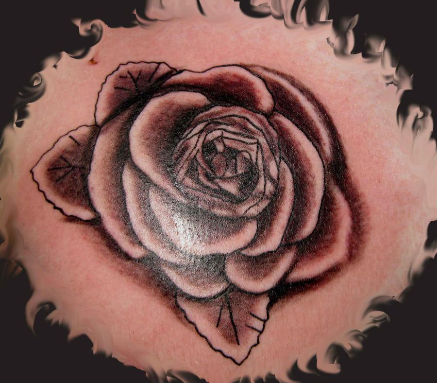 rose <a href=