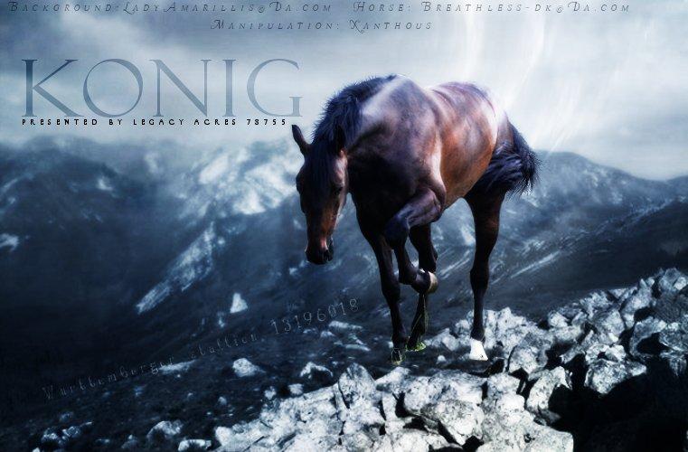 Konig by Magicinmotion