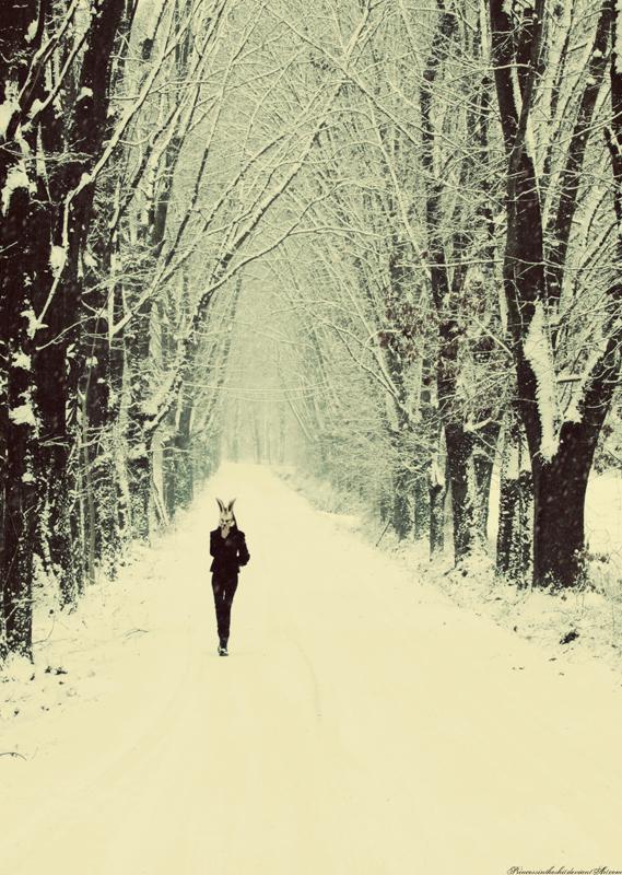 . . Winter Wonderland . . by PrincessInTheShit