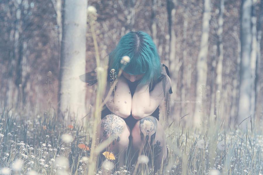 Heartsick Fairy