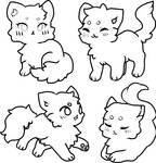 CAT BASES 4
