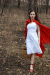 Little Red Riding Hood 7