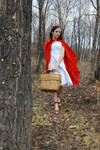 Little Red Riding Hood 8