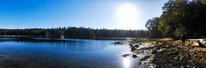 Johnson's Lagoon - Far Side