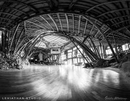 Leviathan Studio - Entrance [BW] by Lasqueti-Ronnie