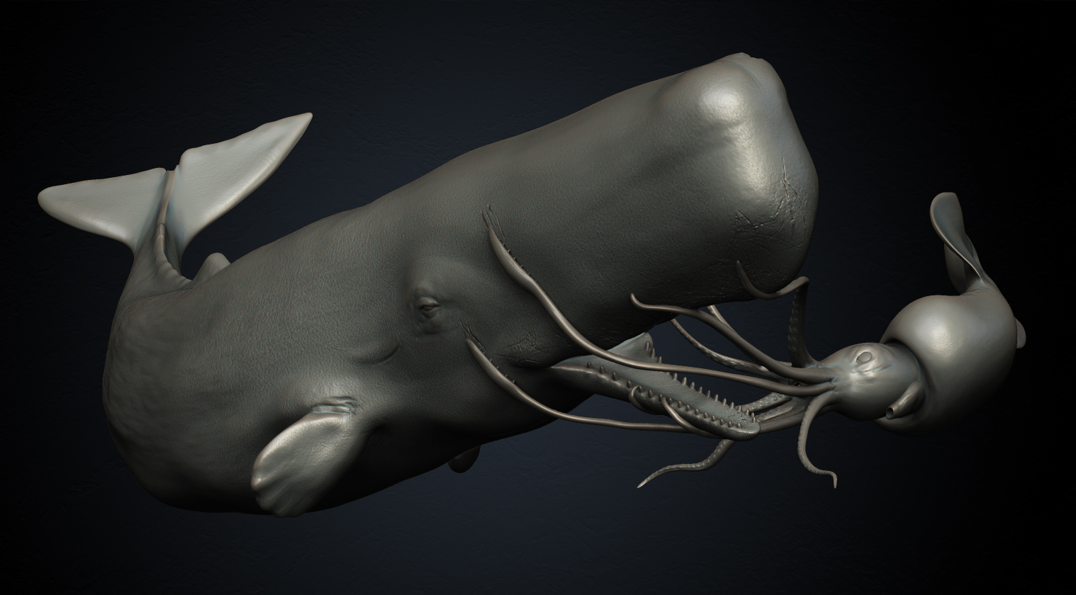 Whale And Giant Squid images