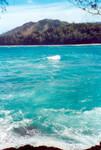 Hawaii Ocean 1
