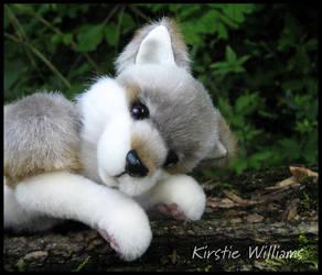Let sleeping wolves lie... by deeed