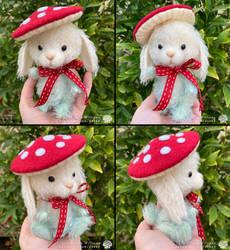 Bunny Toadstool