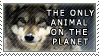 The Only Animal on the Planet by genkistamps