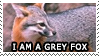 I Am A Grey Fox by genkistamps