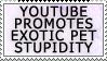 Youtube Promotes Pet Stupid